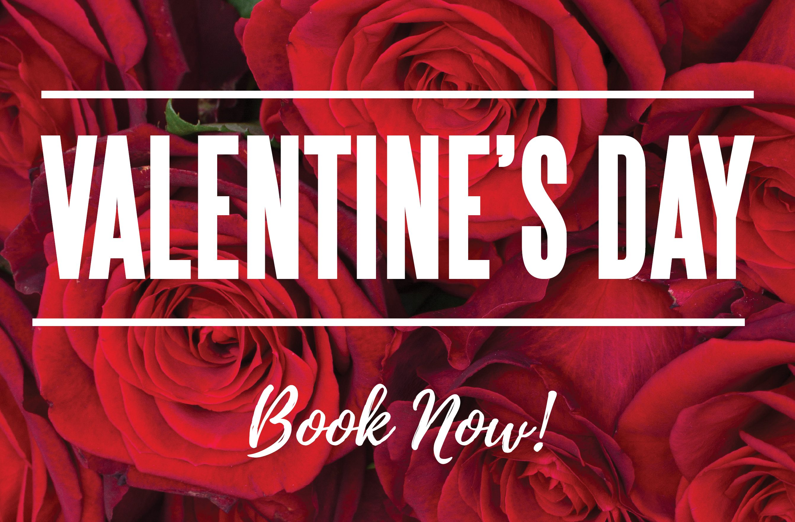 Valentine's Day at Elmar's for lunch or dinner - banner image